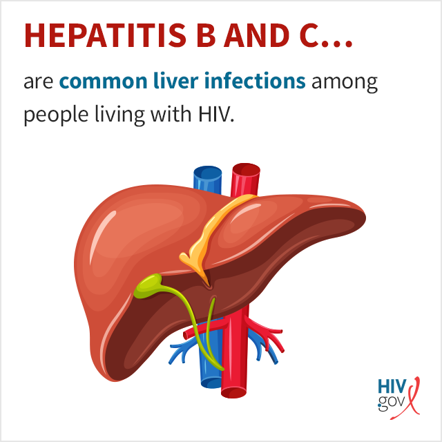Hepatitis B and C are common liver infections among people living with HIV.