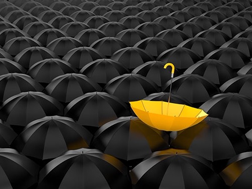 Feature image for digital gov - Picture of group of black umbrellas with one bright yellow umberlla standing out